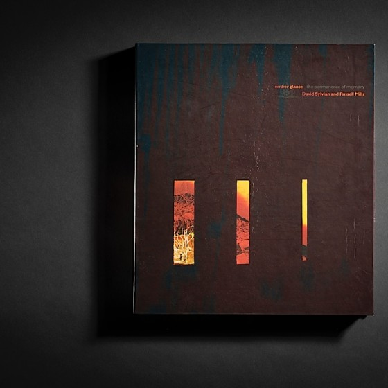 Ember-Glance-book-front-2-560x560