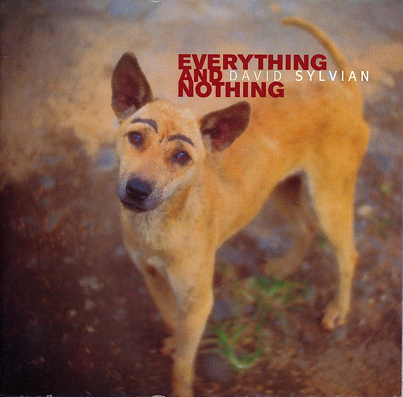 david-sylvian-everything-and-nothing