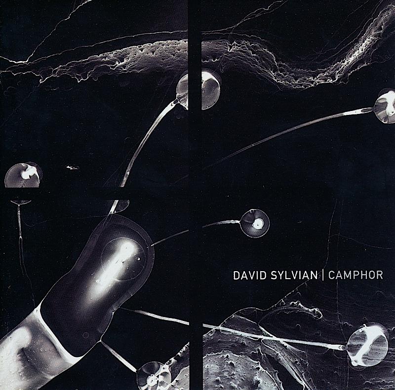 davis-sylvian-camphor