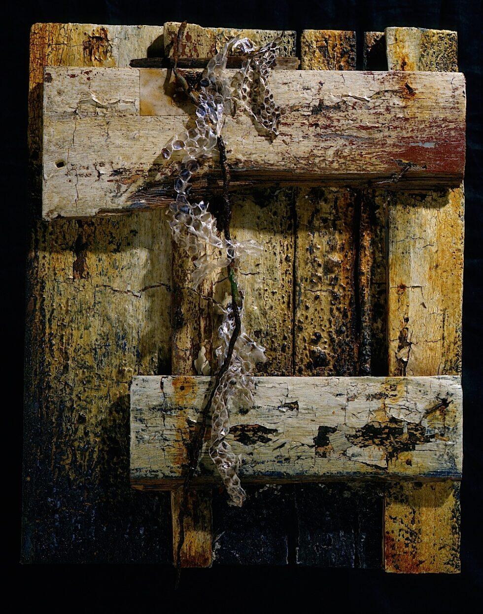 Memory's Wound 1997 (towards Closure)
